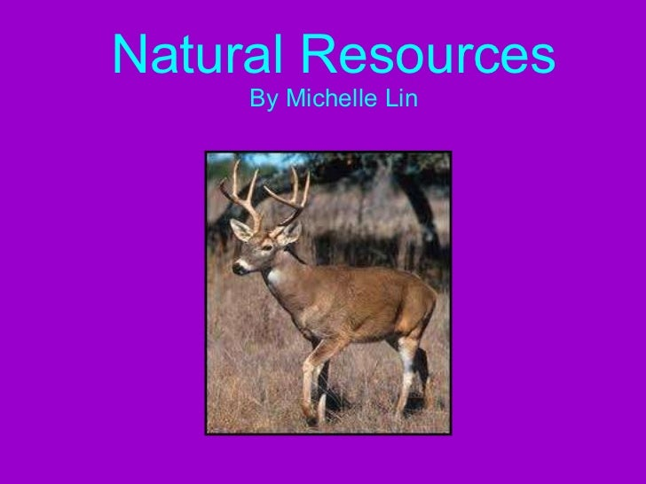 Natural Resources By Michelle Lin