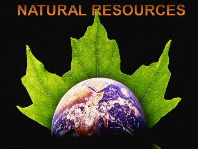 •Natural resources occur naturally within environments •Natural resource is often characterized by amounts of biodiversity...