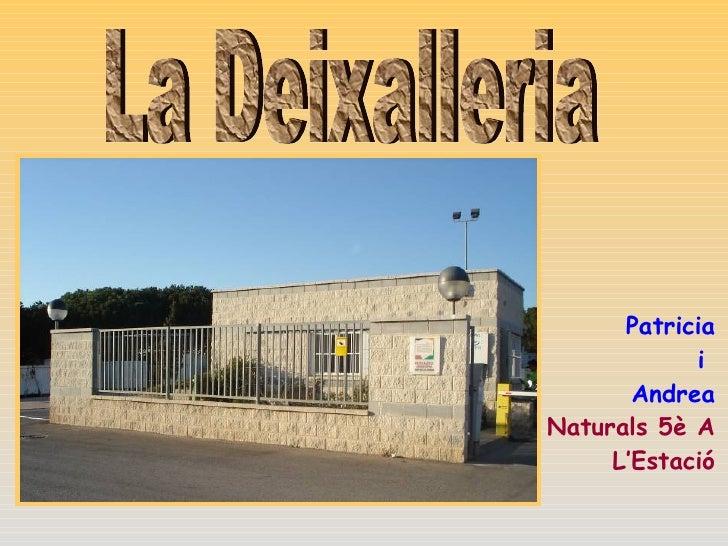 La Deixalleria Patricia i  Andrea Naturals 5è A L'Estació