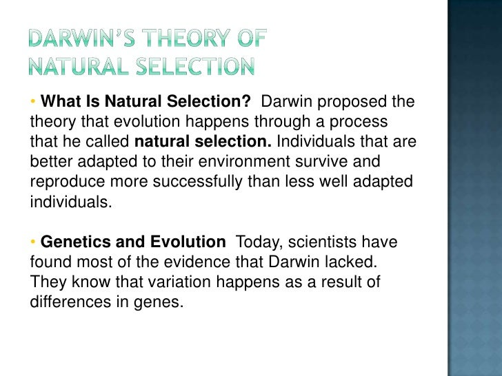 Examples Of Speciation In Natural Selection