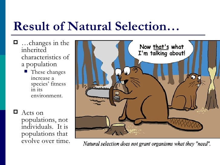 Can Natural Selection Act On An Individual