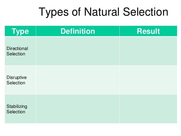 Natural Selection Definition For Kids