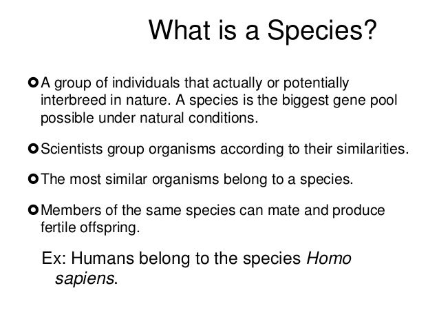 Natural Selection And Speciation Similarities