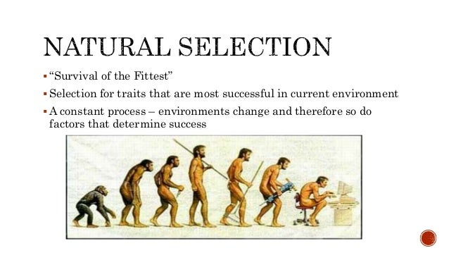Explain Variation In Natural Selection