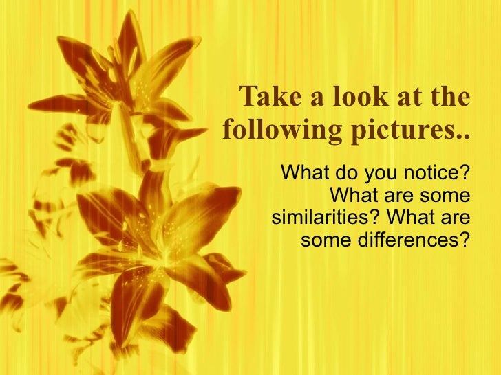 Take a look at the following pictures.. What do you notice? What are some similarities? What are some differences?