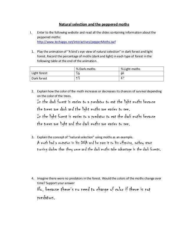 naturalselectionandthepepperedmoths1638jpgcb 1360178607 – Natural Selection Worksheet