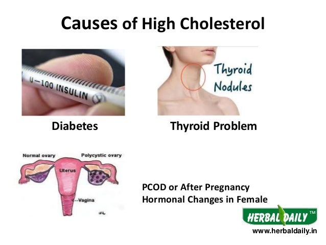 Natural Treatment For Cholesterol 56159751