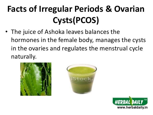 Natural Treatment Pcos Acne