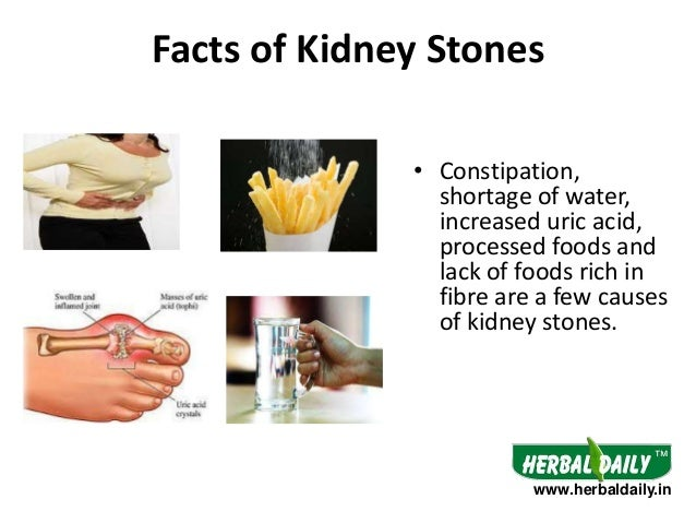 natural treatment for kidney stones in hindi iकिडनी, Human Body