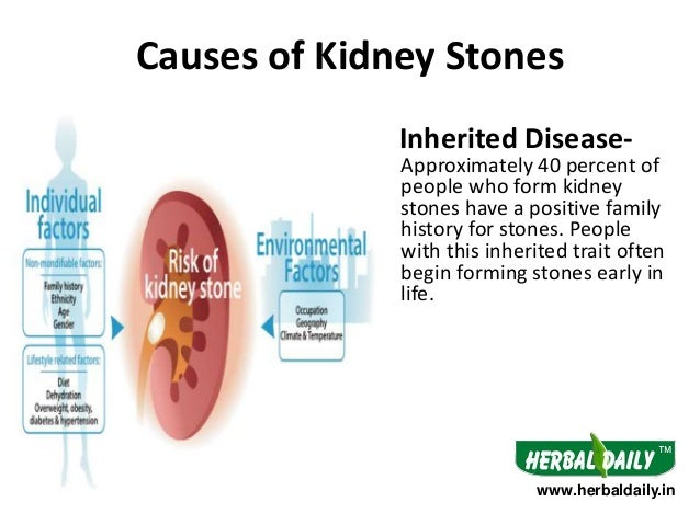 Natural Treatment for Kidney Stones in Hindi Iकिडनी ...