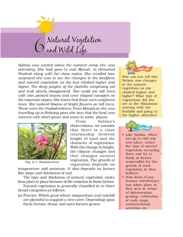 6        Natural Vegetation                  and Wild LifeSalima was excited about the summer camp she wasattending. She h...