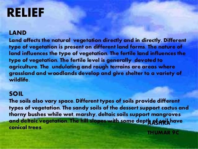 Natural vegetation and wildlife till ecosystem aashka thumar 9c 3 publicscrutiny Image collections