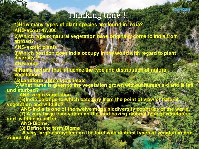 Natural vegetation and wildlife till ecosystem video time publicscrutiny Image collections