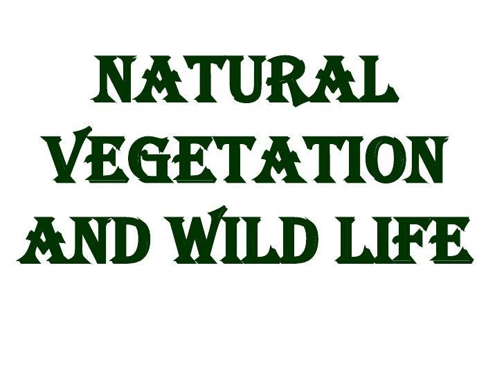 conservation of natural vegetation and wildlife ppt
