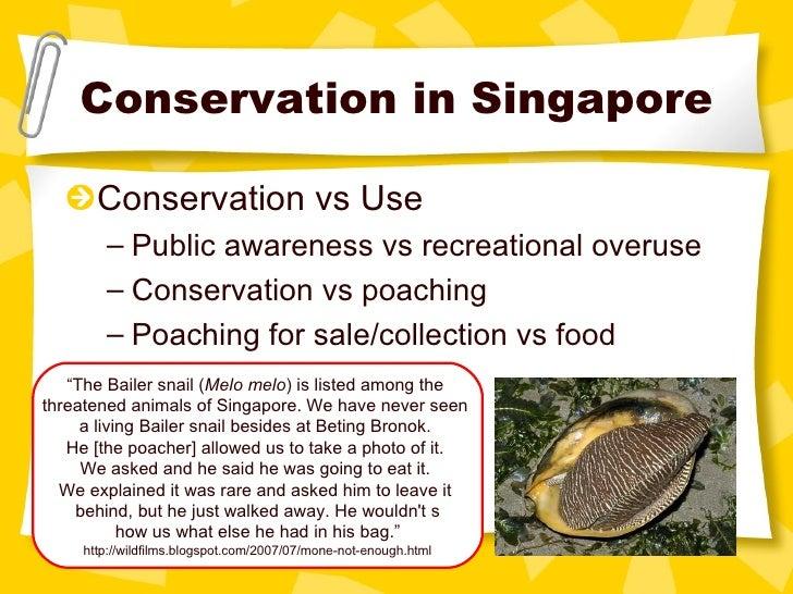 Conservation in Singapore <ul><li>Conservation vs Use </li></ul><ul><ul><li>Public awareness vs recreational overuse </li>...