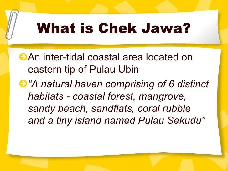 "What is Chek Jawa? <ul><li>An inter-tidal coastal area located on eastern tip of Pulau Ubin </li></ul><ul><li>"" A natural ..."