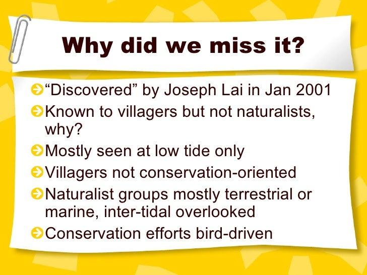 "Why did we miss it? <ul><li>"" Discovered"" by Joseph Lai in Jan 2001 </li></ul><ul><li>Known to villagers but not naturalis..."