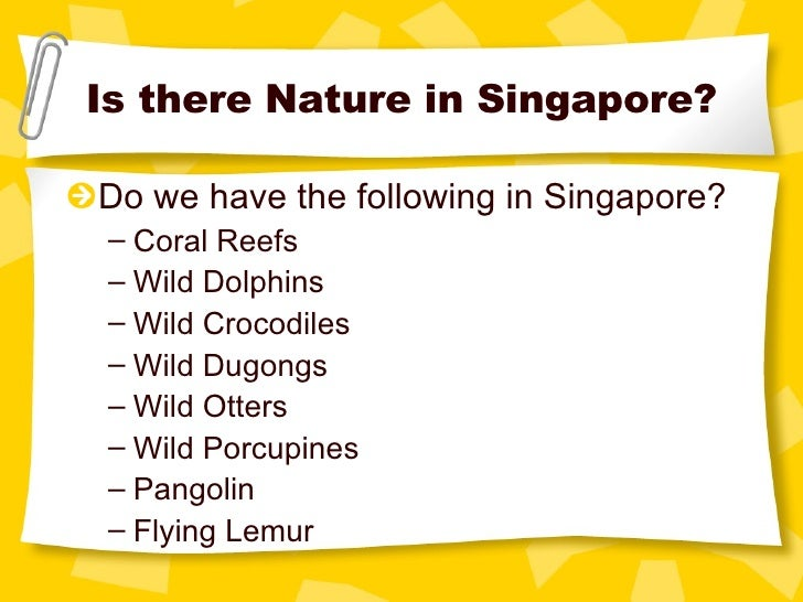 nature conservation in singapore 3 is there nature