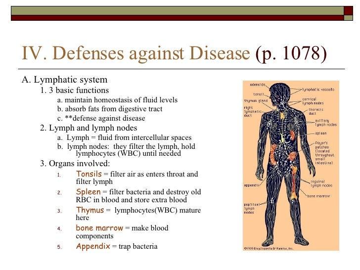 IV. Defenses against Disease  (p. 1078) <ul><li>A. Lymphatic system </li></ul><ul><ul><li>1. 3 basic functions </li></ul><...