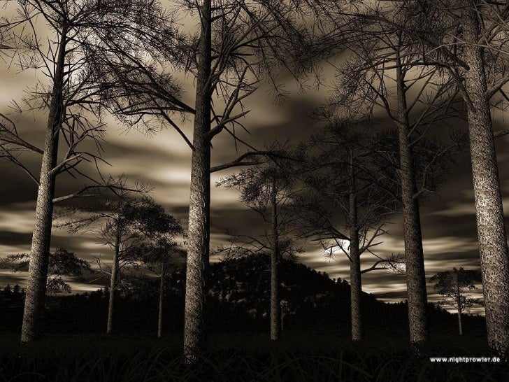 Nature Slideshow