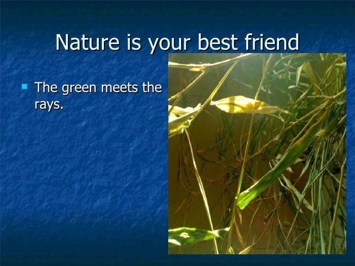 nature is our friend Join our refer a friend scheme each time you convert a friend to natures menu,  we will credit you and your friend's natures menu accounts with £10 worth of.