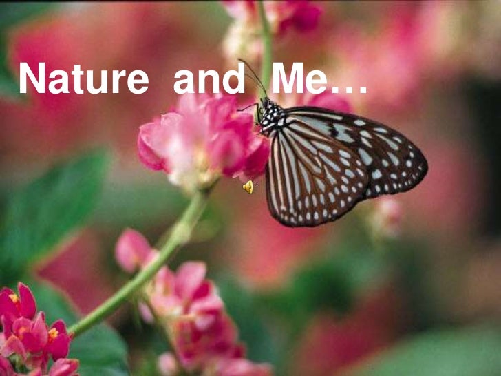 Nature and me: God's precious gift