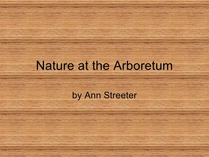 Nature at the Arboretum by Ann Streeter