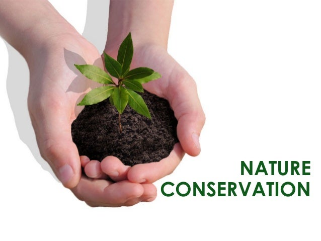 Image result for nature conservation
