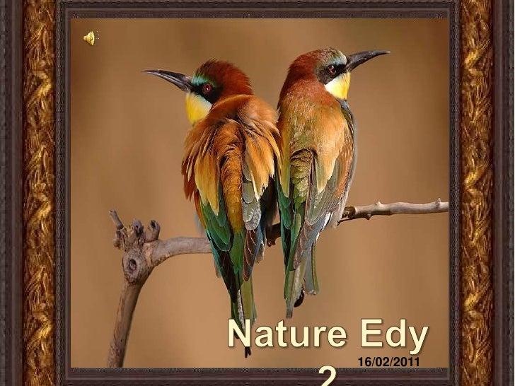 Nature Edy 2<br />16/02/2011<br />