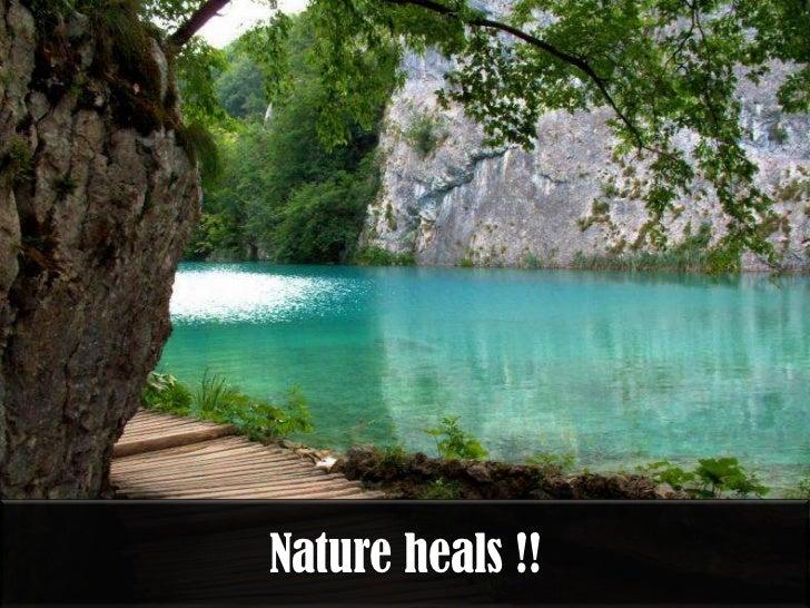 Nature heals !!
