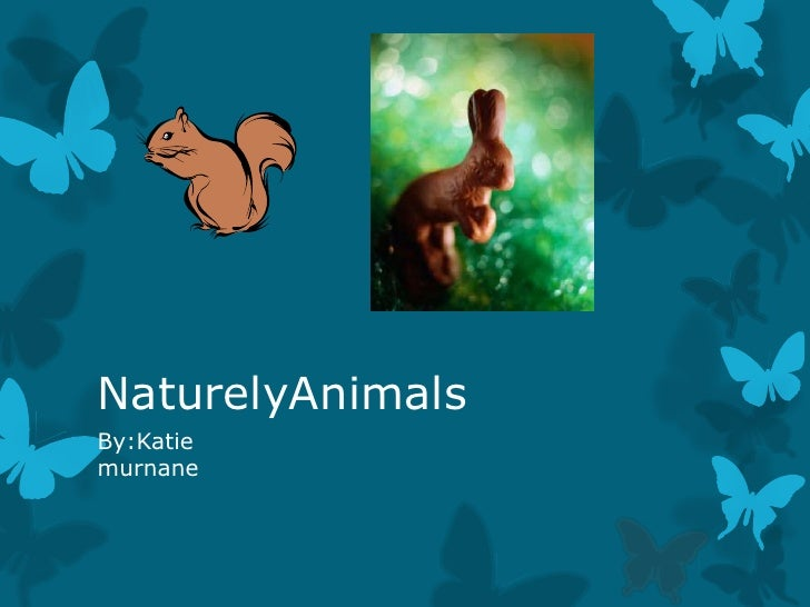 NaturelyAnimalsBy:Katiemurnane