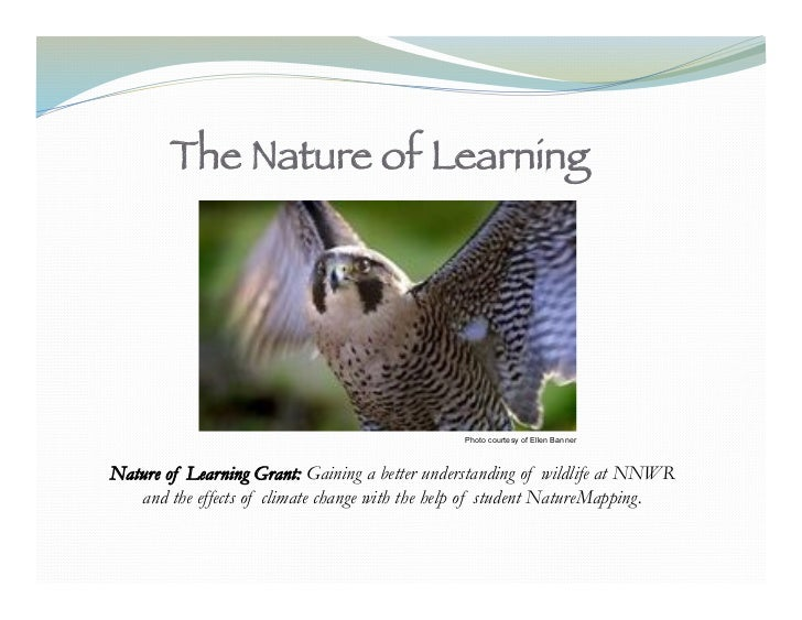 The Nature of Learning!                                               Photo courtesy of Ellen BannerNature of Learning Gra...