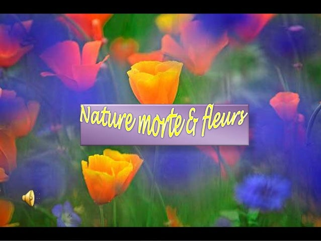 Nature morte et fleurs - Initiatives fleurs et nature ...