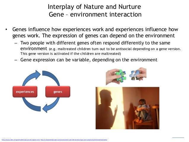 nature nurture or an interaction worksheet Nature: it's genetic you  it's environmental you've acquired it because of life experiences and circumstances nature vs nurture worksheet take a stand do .
