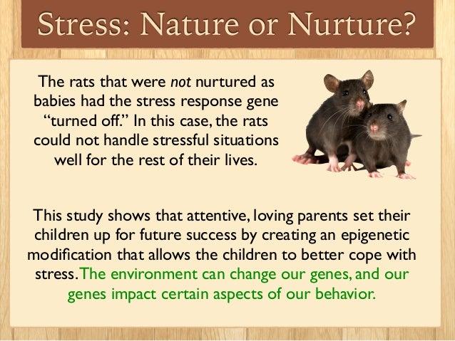 Nature Vs Nurture Babies