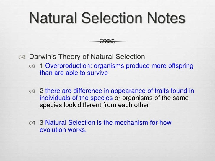 What Is The Smallest Unit Natural Selection Can Change