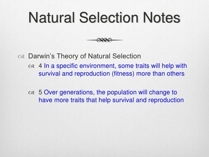 Darwin S Theory Of Natural Selection Key Points