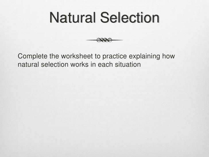 Nature of science and evolution – Nature of Science Worksheet