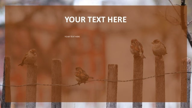 Nature Ppt Template Free Download