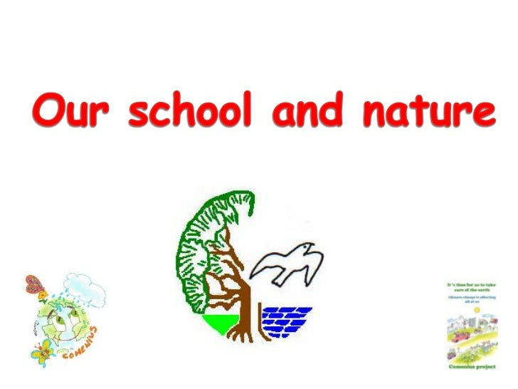 Our school and nature<br />