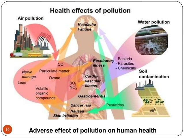 Adverse effect of pollution on human health10