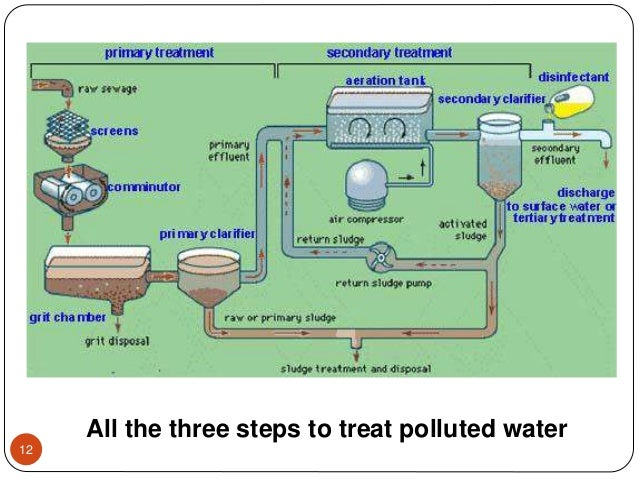 All the three steps to treat polluted water 12