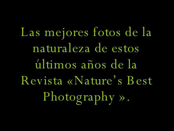 Las mejores fotos de la naturaleza de estos últimos años de la Revista «Nature's Best Photography».