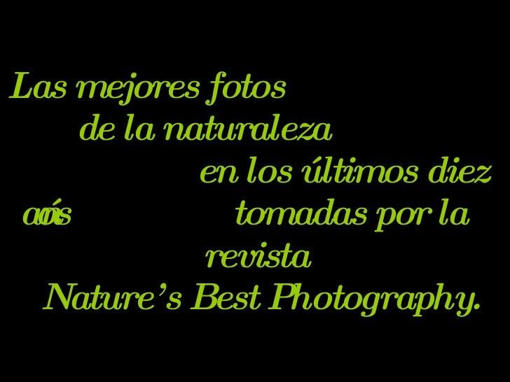 Las mejores fotos  de la naturaleza  en los últimos diez años  tomadas por la revista  Nature's Best Photography.