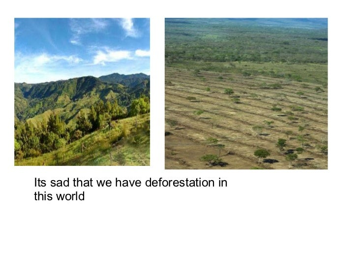 Its sad that we have deforestation in this world