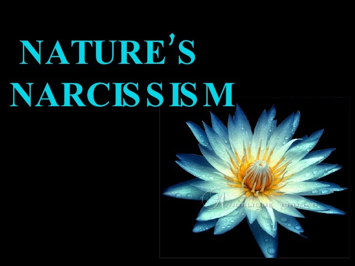 NATURE'S NARCIS S IS M