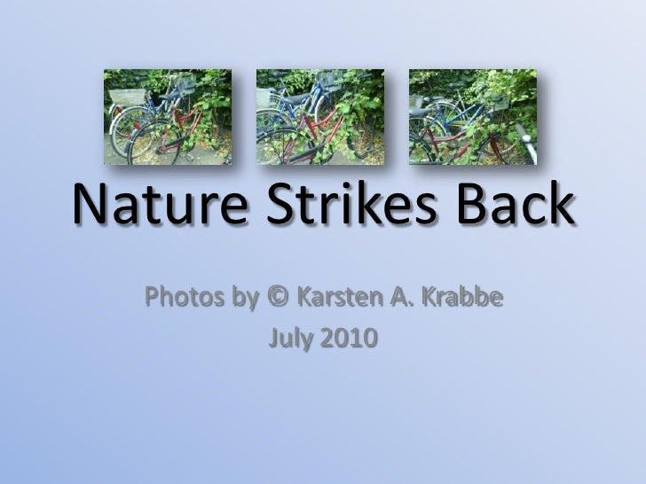 Nature Strikes Back<br />Photos by © Karsten A. Krabbe<br />July 2010<br />