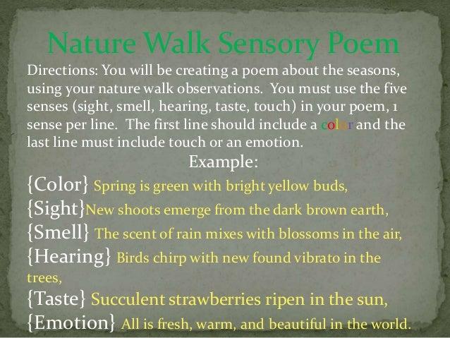 Nature Walk Sensory Poem
