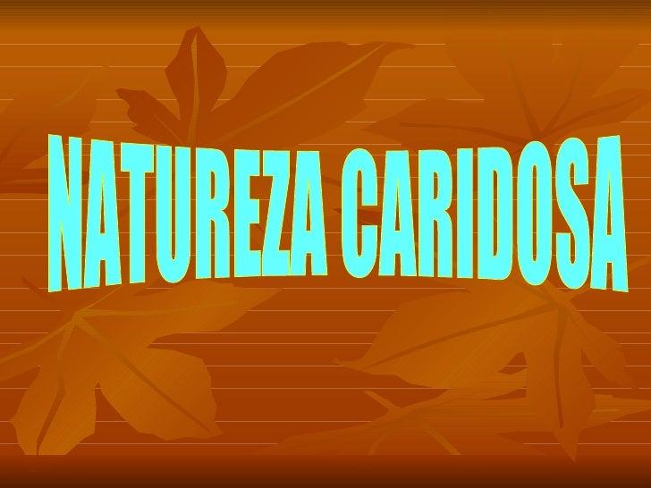 NATUREZA CARIDOSA
