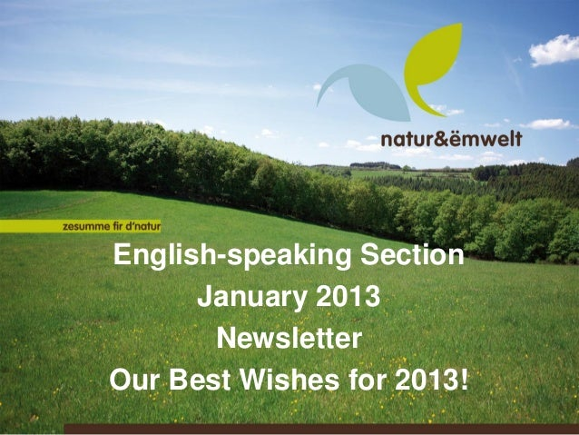 English-speaking Section      January 2013       NewsletterOur Best Wishes for 2013!